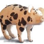 Paper Mache Pig Sculpture