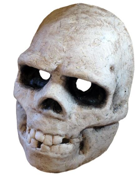 Cat Skull Back